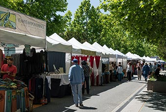 festival booths on tree-lined downtown street